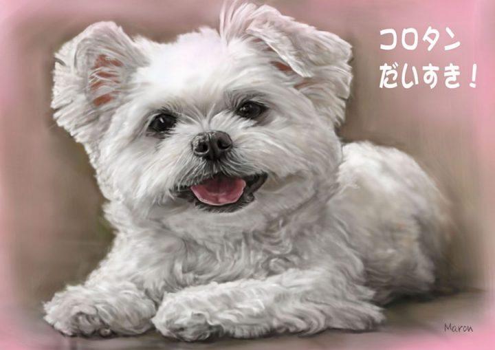 犬の肖像画似顔絵