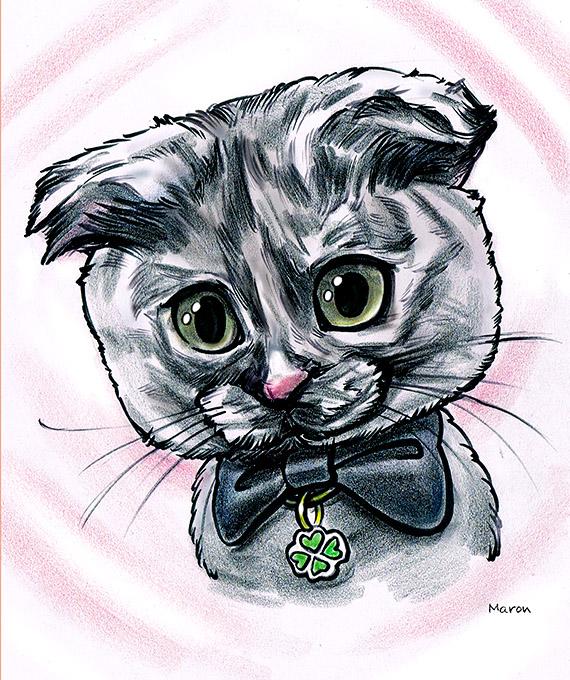 みみずくみたいにかわいいペット猫の似顔絵です。